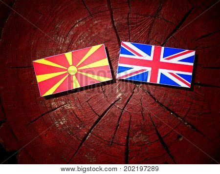 Macedonian Flag With British Flag On A Tree Stump Isolated