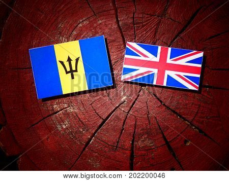 Barbados Flag With British Flag On A Tree Stump Isolated