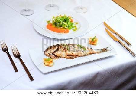 Grilled dorada fish with lemon and salad served on a white plate