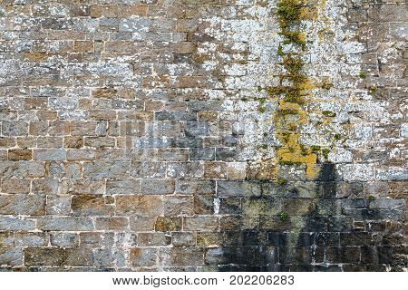 Stone wall texture with decay from long term water leak and moss growing