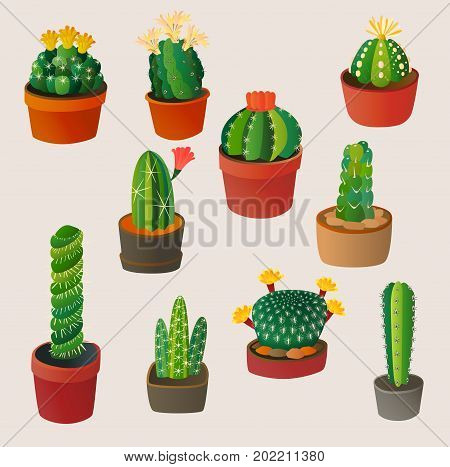 Green desert plant nature cartoon cactus and mexican summer cute cartoon cactus home plant. Cartoon cactus tropical plant traditional west flower. Cute cartoon cactus flat nature vector illustration.