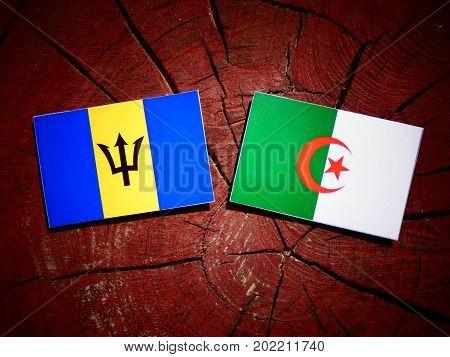 Barbados Flag With Algerian Flag On A Tree Stump Isolated