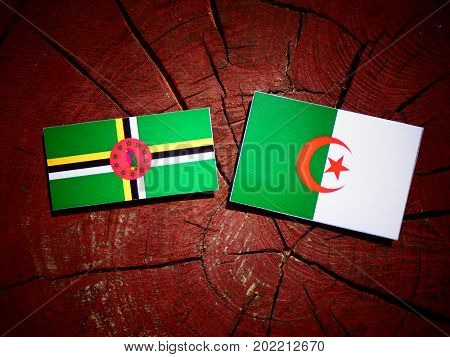 Dominica Flag With Algerian Flag On A Tree Stump Isolated