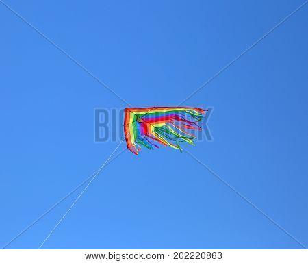 Kite Flying High In Blue Sky