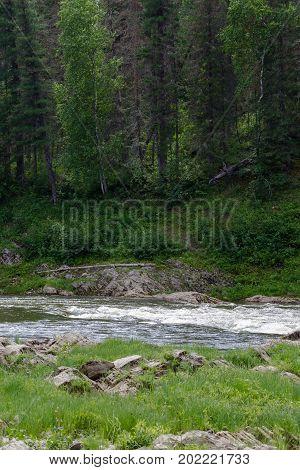 Stream of water. Stone and rock in the water. Krasnoyarsk region, Russia