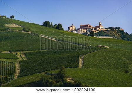 View of the village of La Morra and the wonderful hills with green vineyards of Langa Piedmont