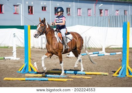 MOSCOW, RUSSIA - 27th August 2017: A unknown rider on horse in a show jumping event at a show Summer Cup 2017 among amateur athletes. at Leninskie Gorki on 27 aug 2017 in Moscow, RUSSIA