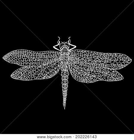 Decorative beautiful dragonfly white outline color isolated on black background. Design element stylish card with space for text. Steampunk style insect. Vector hand drawn illustration.