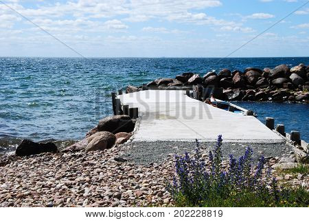 Summer flowers by an old pier by the coast of the Baltic Sea in Sweden