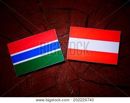Gambia Flag With Austrian Flag On A Tree Stump Isolated