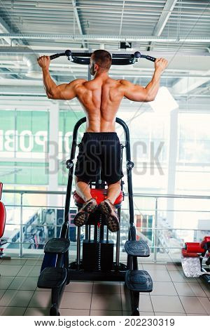 A strong sexy man with very muscular back exercising on the arm press machine on a light gym background. A shirtless, professional bodybuilder working out. Modern gym equipment and machines.