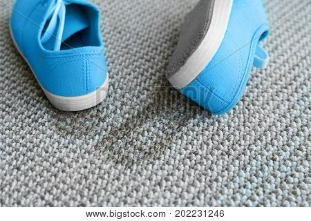 Pair of shoes with mud on carpet