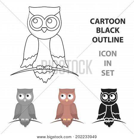 Owl icon cartoon. Singe animal icon from the big animals cartoon.