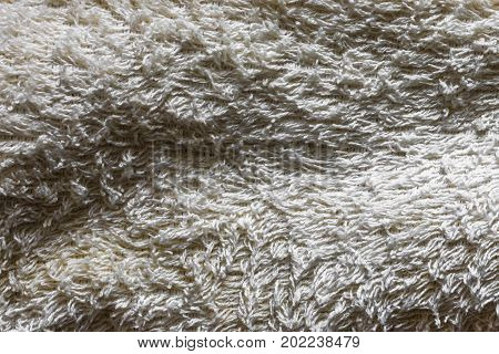 Natural Wisp And Body Scrub Texture With Natural Patterns Can Be Used As Background