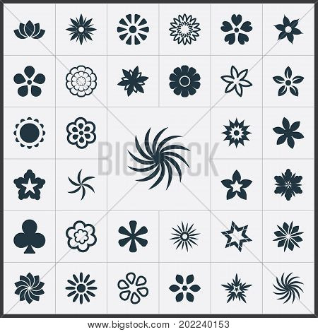 Elements Lucky Leaf, Alstroemeria, Tulip And Other Synonyms Saffron, Lily And Narcissus.  Vector Illustration Set Of Simple Flower Icons.