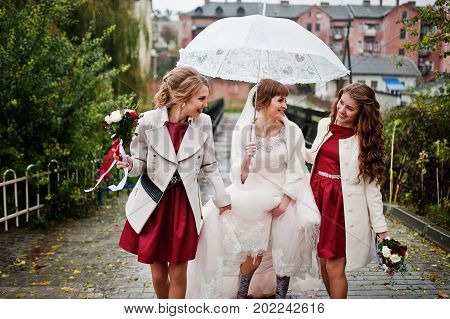 Amazing Young Bride And Two Bridesmaids Taking A Walk On A Rainy Wedding Day With An Umbrella.