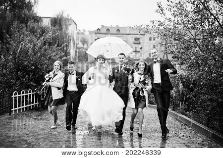 Wedding Couple And Groomsmen With Bridesmaids Walking On A Rainy Day With An Umbrella. Black And Whi