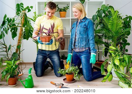 A portrait of a couple gardening tog