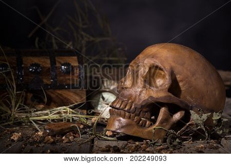 Human skull with treasure chest on a dark background
