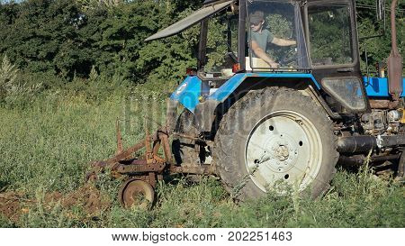 Tractor working on the potato field. Harvesting potatoes process with using tractor at small organic farm