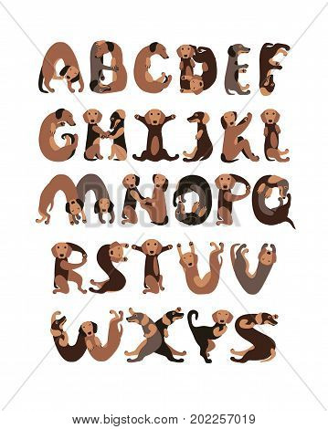 Alphabet letters in shape of Dachshund dogs