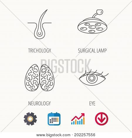 Eye, neurology brain and surgical lamp icons. Trichology linear sign. Calendar, Graph chart and Cogwheel signs. Download colored web icon. Vector