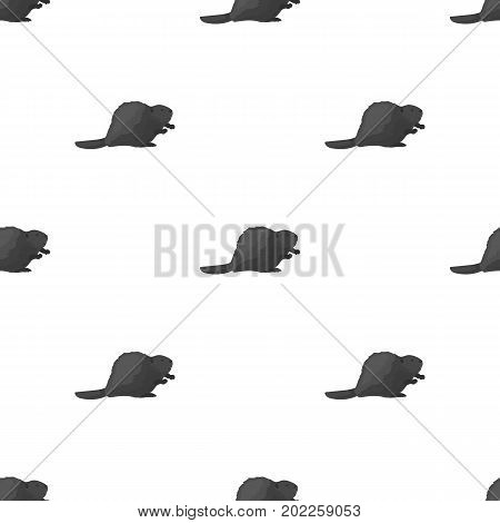 Canadian beaver. Canada single icon in monochrome style vector symbol stock illustration .