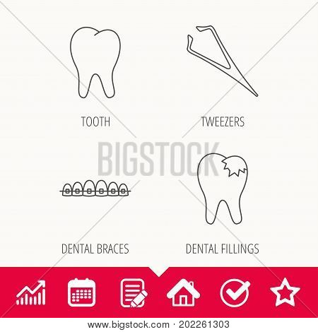 Dental braces, fillings and tooth icons. Tweezers linear sign. Edit document, Calendar and Graph chart signs. Star, Check and House web icons. Vector