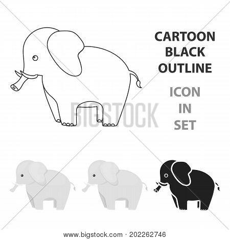 Elephant icon cartoon. Singe animal icon from the big animals cartoon.