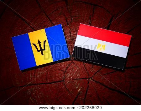 Barbados Flag With Egyptian Flag On A Tree Stump Isolated