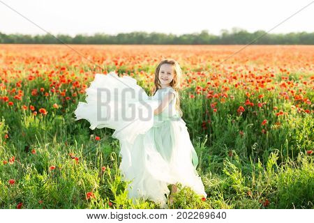 girl model poppies childhood fashion children nature and summer concept - on the field of poppies smiling beautiful little girl model in a blue ball dress she raises the lush hem dress