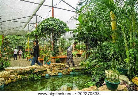 MINDO, ECUADOR - AUGUST 27, 2017: Unidentified people taking pictures and enjoying the plants inside of a greenhouse, with a beautiful pond, located in Mindo recreation place, in western Ecuador, at 1, 400m elevation in Mindo, Pichincha.