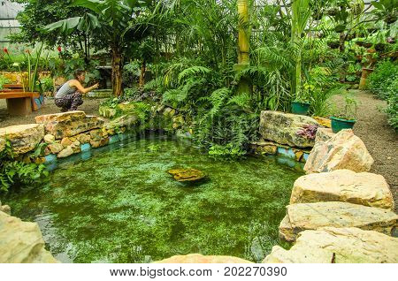 MINDO, ECUADOR - AUGUST 27, 2017: Unidentified people taking pictures of a beautiful pond, located in Mindo recreation place, in western Ecuador, at 1, 400m elevation in Mindo, Pichincha.