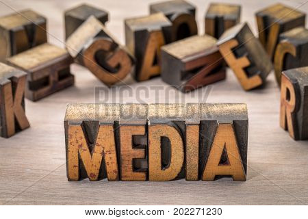 media word abstract in vintage letterpress  printing blocks against grained wood
