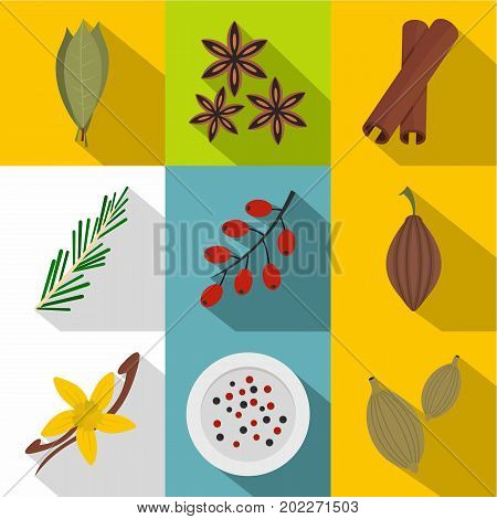 Eco spices and herbs icon set. Flat style set of 9 eco spices and herbs vector icons for web design