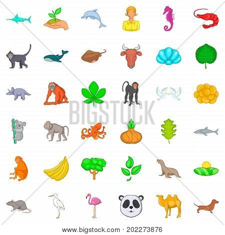 Vital icons set. Cartoon style of 36 vital vector icons for web isolated on white background