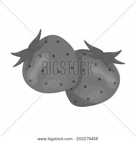 Strawberry, sweet and sour fruit.Fruit single icon in monochrome style vector symbol stock illustration .