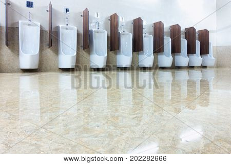 Toilet men and row of urinal bowls. Interior resting room