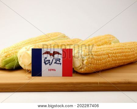Iowa Flag On A Wooden Panel With Corn Isolated On A White Background