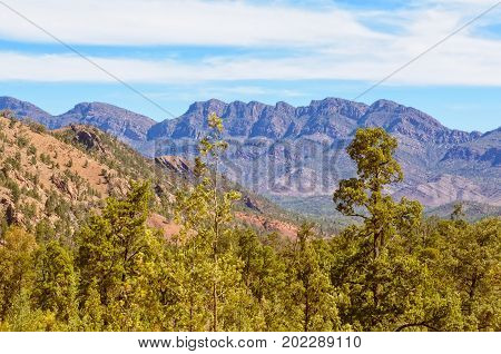 View of Heysen Range from the Bunyeroo Gorge Road in Wilpena Pound - Flinders Ranges, SA, Australia