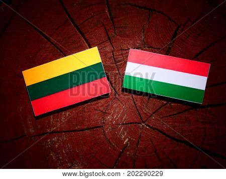 Lithuanian Flag With Hungarian Flag On A Tree Stump Isolated