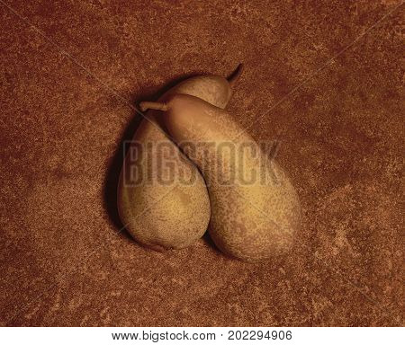 two pears cuddling in brown rusty ambiance