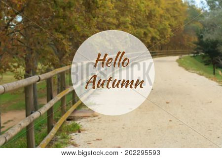 Hello Autumn greeting card with deserted gravel road and autumn trees in background