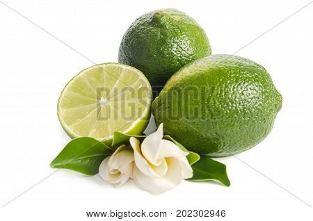 Green Limes With Half Of  Juicy Lime And Beautifull Flower Isolated On White Background