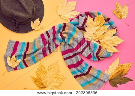 Autumn Arrives. Fall Fashion Glamour Lady Look.Trendy Scarf. Fashion Stylish Glamour Hat. Autumn Fall Leaves. Minimal. Vintage