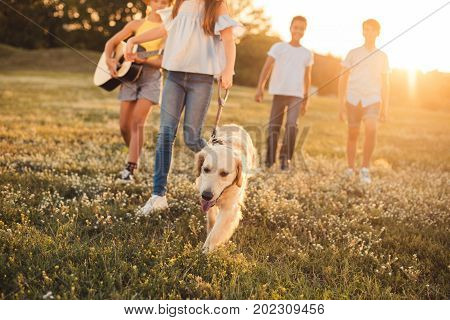 cropped shot of multiethnic teenagers with dog and guitar walking in park at sunset