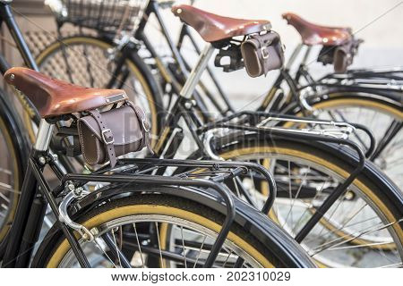 Row of bicycle tires on bicycle rental station Horizontal