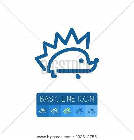 Porcupine Vector Element Can Be Used For Hedgehog, Porcupine, Prickly Design Concept.  Isolated Hedgehog Outline.