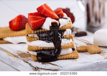 Picnic dessert smores with marshmallow, graham crackers, strawberry and chocolate sauce on light background