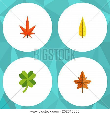 Flat Icon Foliage Set Of Alder, Aspen, Maple And Other Vector Objects